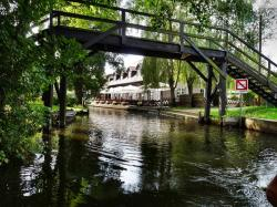 spreewald, depth, water, boot, nature, bridges