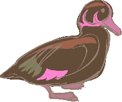 stylized, bird, duck, style, lines, colors, art, blurry