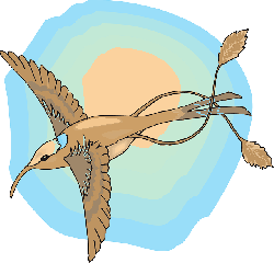 sun, sky, bird, wings, hummingbird, the, with, feathers