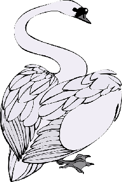 swan, bird, white, animal, water, swim, noble, romantic