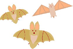 three, design, colors, wings, halloween, different