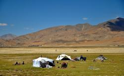 tibet, landscape, nomads, people, tents, cattle, fields