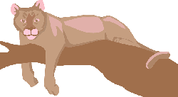 tree, branch, color, art, animal, lounging, cougar