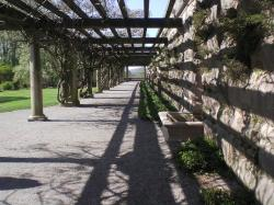 trellis, summer, path, beautiful