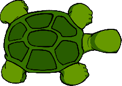 turtle, top, view, cartoon, animal, reptile
