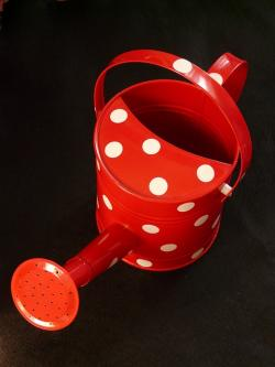 watering can, casting, red, points, white, small, water