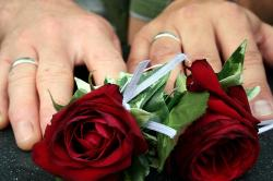 wedding, roses, rings, hands, hand