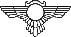 wings, eagle, esoteric, metaphysical, occult, pagan