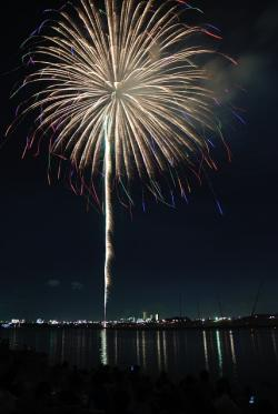 yellow, colorful, flower, fireworks, sky, night, japan