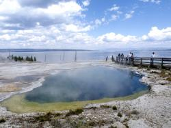 yellowstone, national, park, wyoming, usa, nature